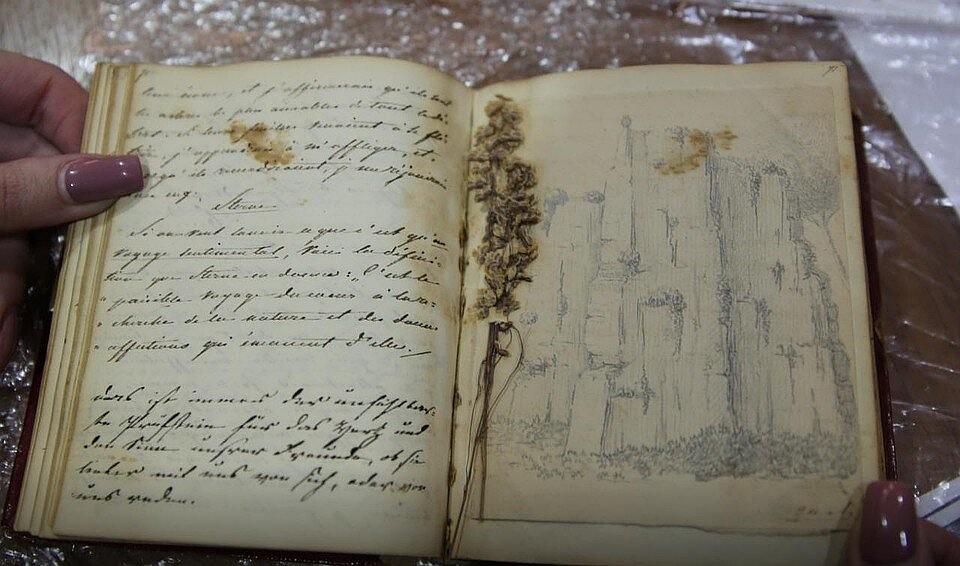 Гербарий на страницах дневника